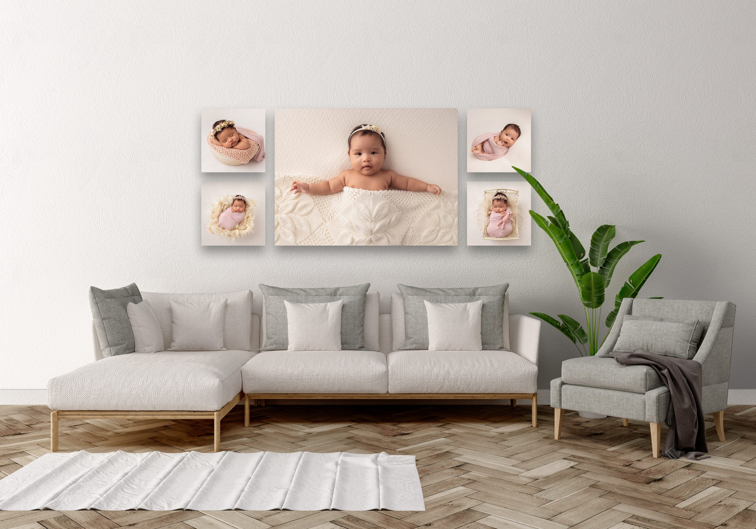 Wall art collection of canvas baby prints